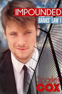 Banks' Law 1