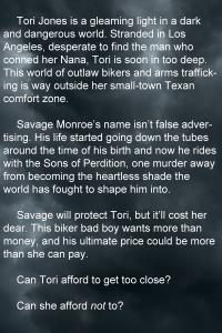 Blurb 1