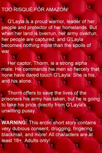 Blurb 3
