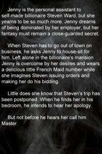 Blurb 6