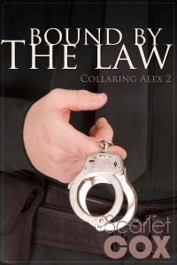 Collaring Alex 2